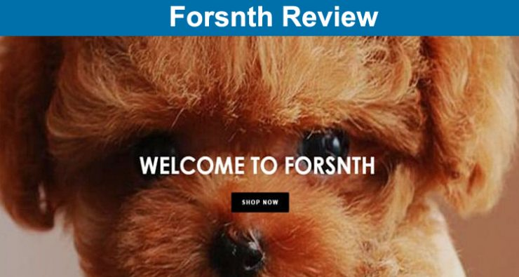 Forsnth Review