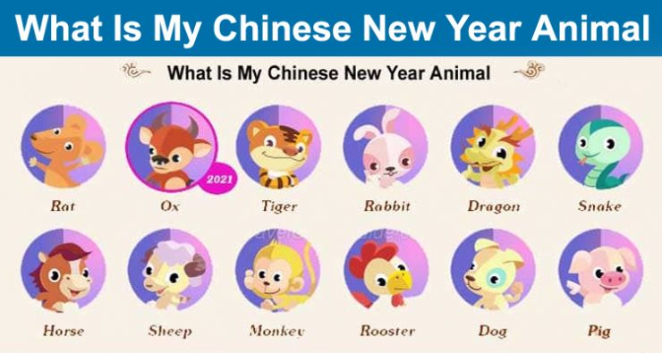 What Is My Chinese New Year Animal